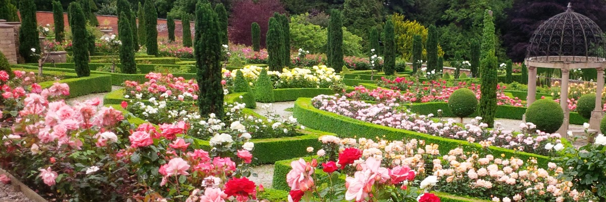 Hopton Summer Rose Gardens
